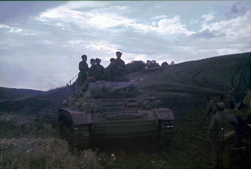Танк PzKpfw.III в поле в Белгородской области