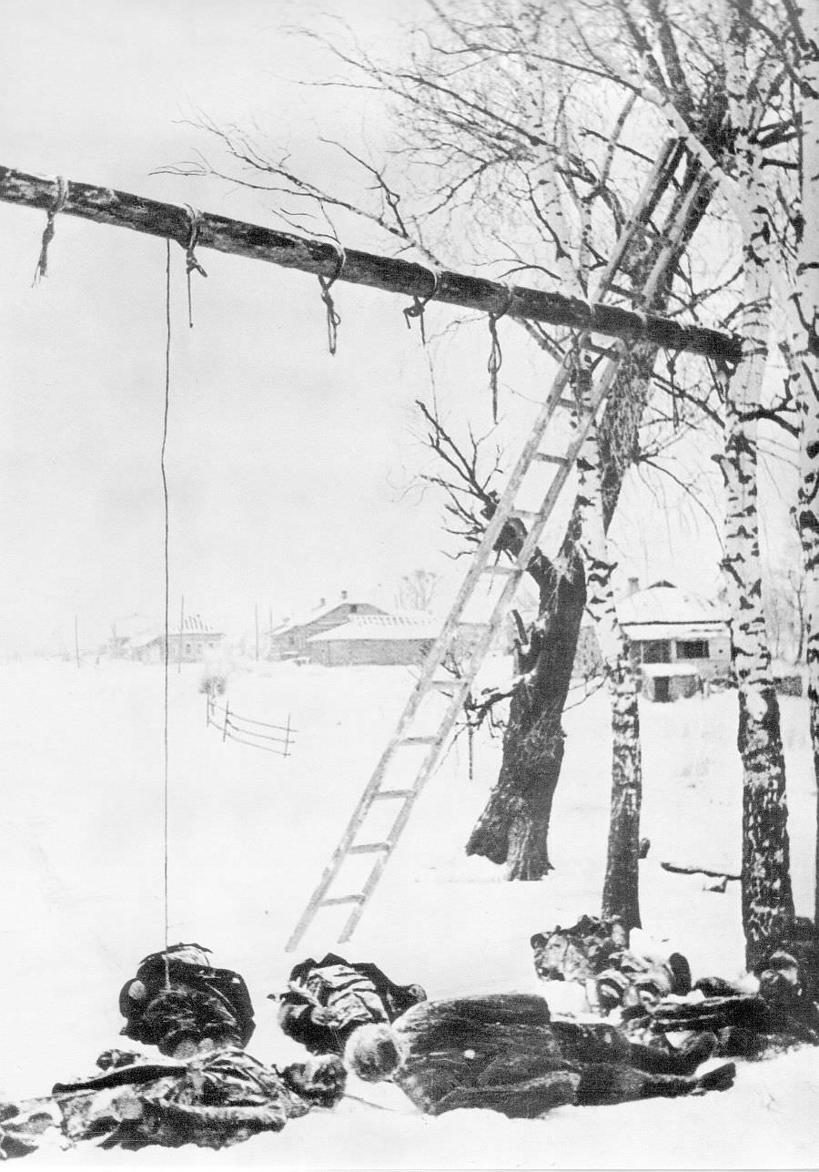 Тела советских граждан, повешенных немцами