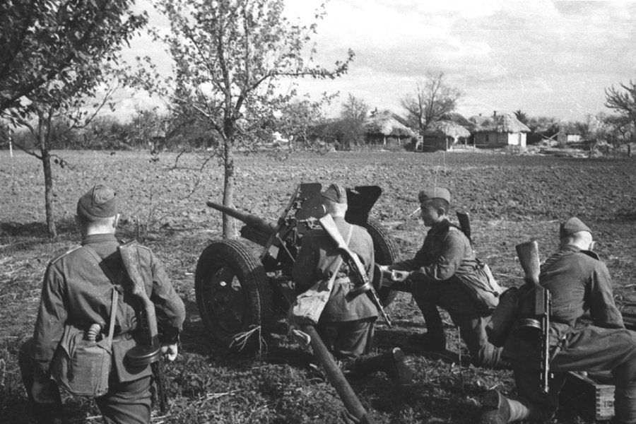 Расчет советской 45-мм противотанковой пушки на Курской дуге