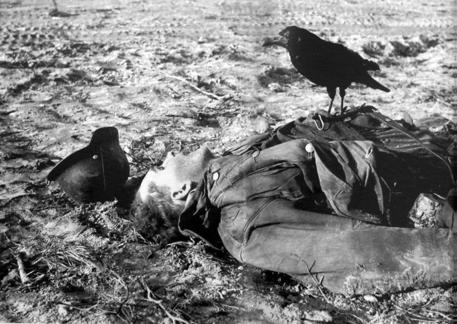 Ворон, сидящий на теле убитого немецкого солдат