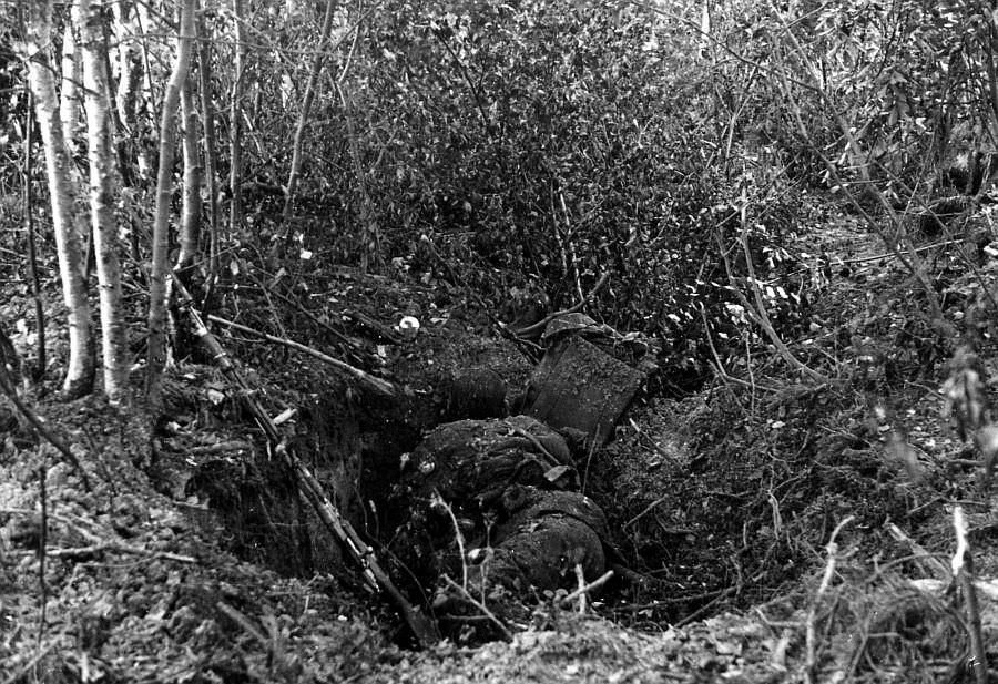 Погибшие красноармейцы в лесу