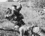 Отдельная мотострелковая бригада особого назначения (ОМСБОН)