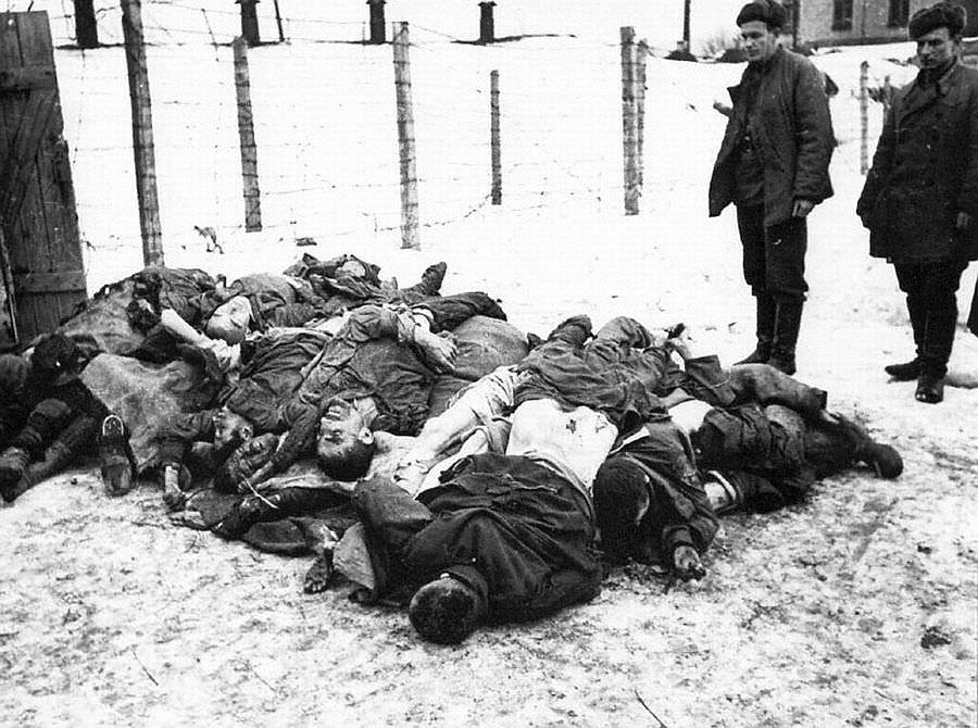 Жертвы фашистского террора
