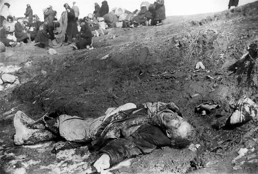 Порт Кобона: умерший от голода ленинградец