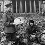 14 Сентября 1941 года