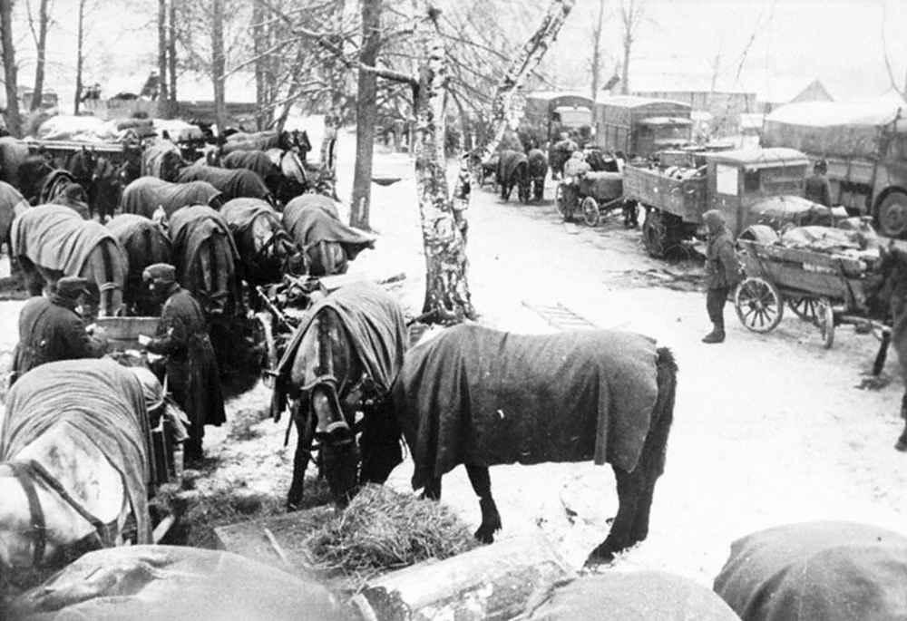 Отступление немецких войск из района Ленинграда