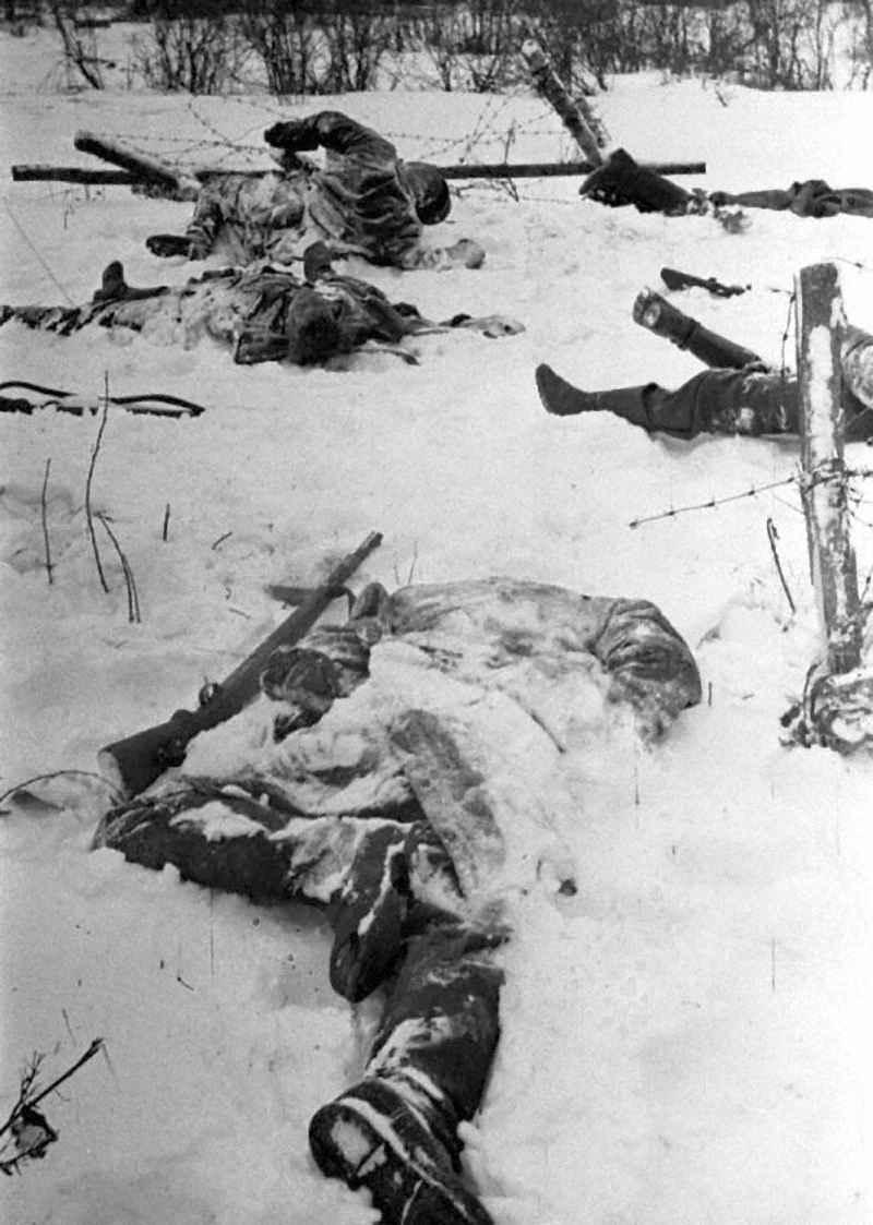 Трупы гитлеровцев на одном из участков Наро-Фоминского направления