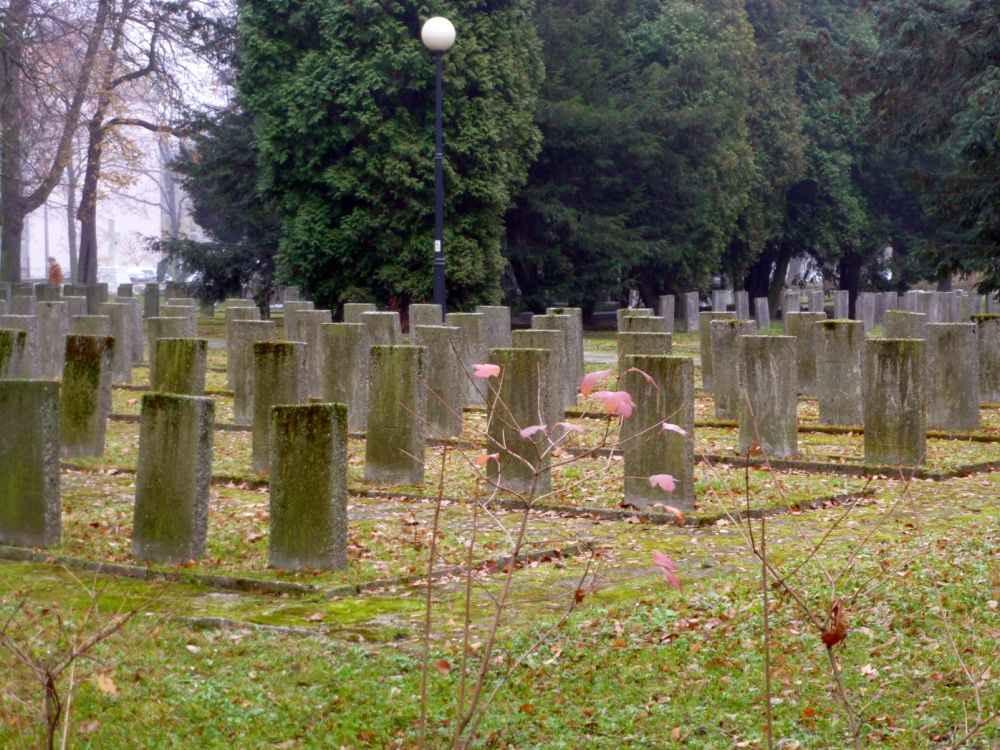 Захоронения советских воинов, павших в борьбе с немецко-фашистскими захватчиками