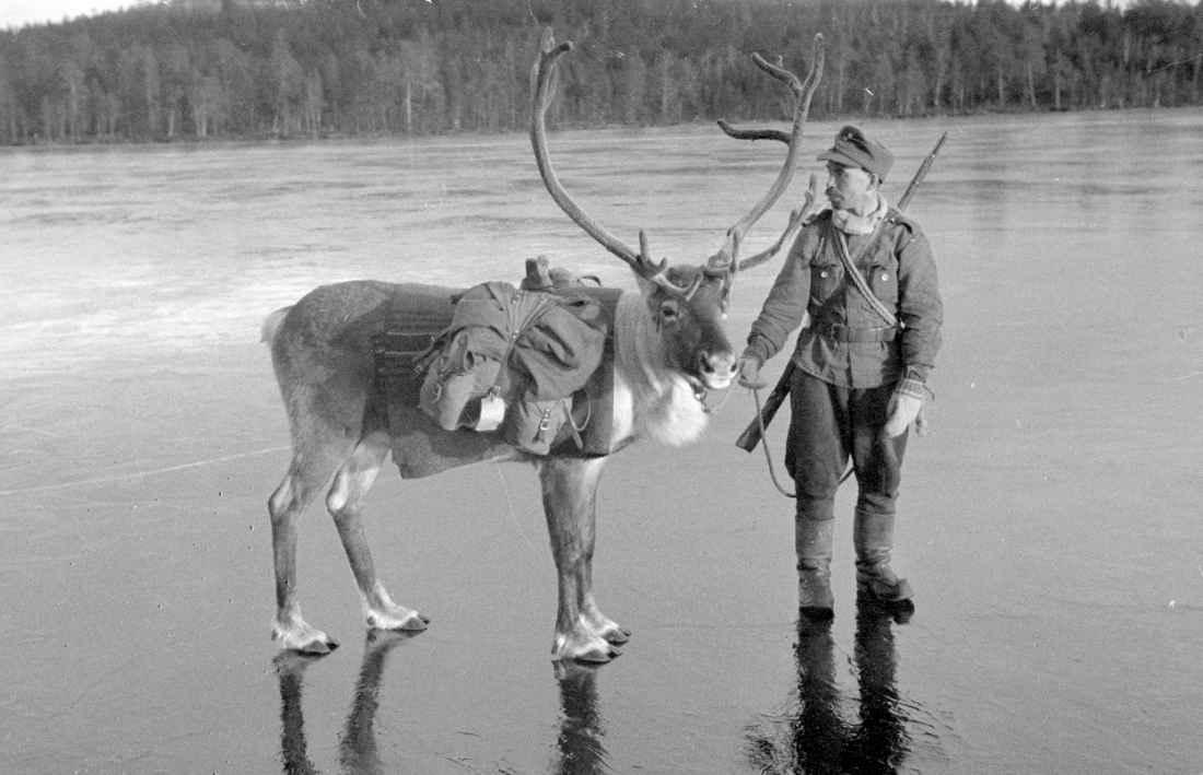 Финский солдат с оленем на льду озера